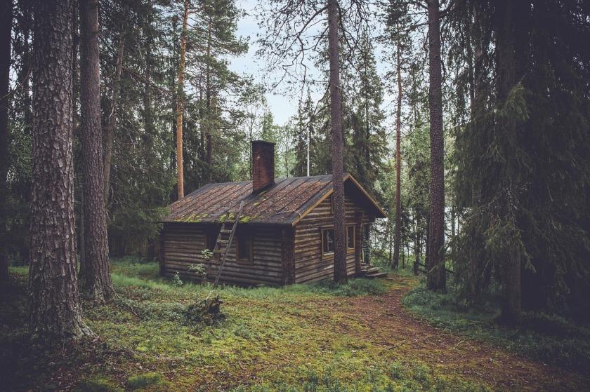 cabin-1081733_1280