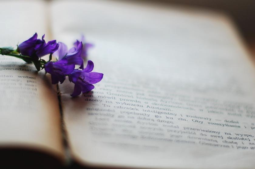 book-2378479_1920